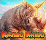 Raging Rhino Small